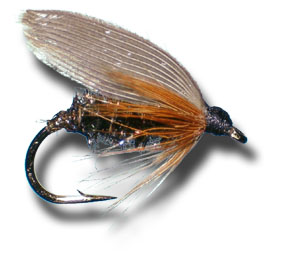 Leadwing Coachman Wet Fly