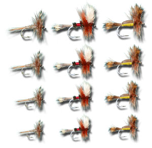 Attractor Assortment - 12 Flies
