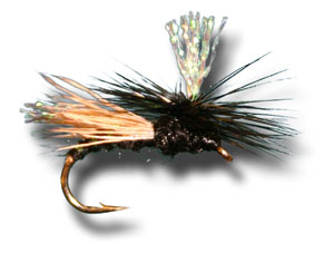 Krystal Caddis - Black