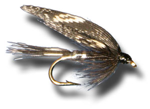 Beauty Wet Fly