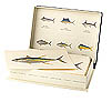 BLUEWATER GAMEFISH OF NORTH AMERICA: 18 CARD SET