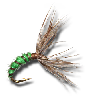 Tenkara Caddis Pupa - Green